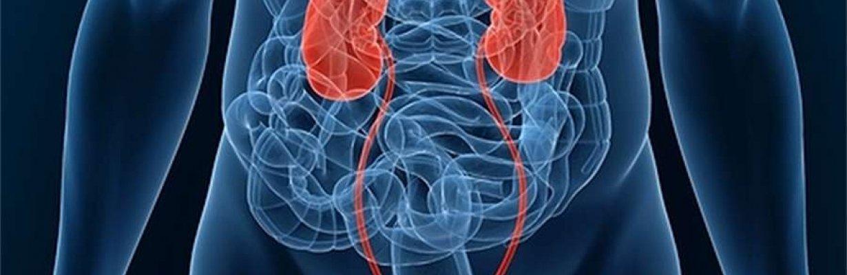 Инфекции мочевыводящих путей (ИМШ)